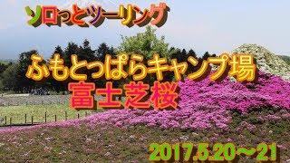 ソロっとツーリング ふもとっぱらキャンプ場・富士芝桜 thumbnail