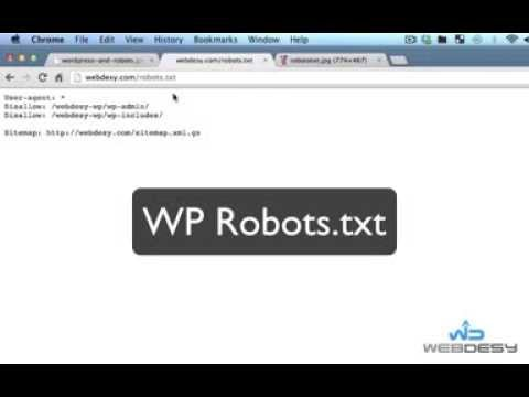 How to Use the Robots.txt File with WordPress - WebDesy.com