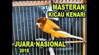Gambar cover KENARI GACOR JUARA NASIONAL 2018 MASTERAN KENARI FULL