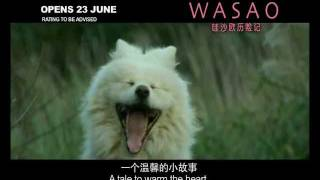 WASAO the movie (trailer)
