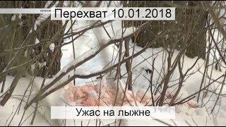 Перехват 10.01.2018 Ужас на лыжне