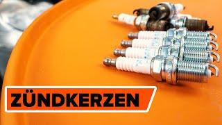 Schrittweise Wartungsanweisungen und Videoanleitungen für VW
