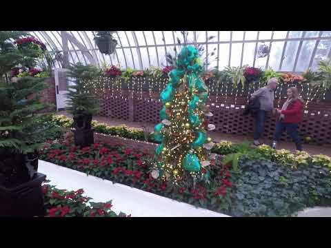 Phipps Conservatory 2018 Winter Flower Show & Light Garden Holiday Magic: Let it Glow!