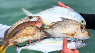 NO Fish Left BEHIND...Catch Clean Cook- Florida Keys Reef Fish