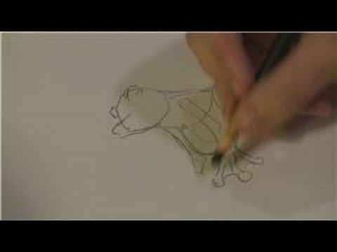 how-to-draw-animals-:-how-to-draw-tropical-rain-forest-animals