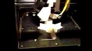 3D принтер. Изготовление деталей ракеты(Изготовление деталей ракеты при помощи 3D принтера. Россия, Свердловская область, ГО Карпинск, МАОУ СОШ №5,..., 2013-11-14T13:12:21.000Z)