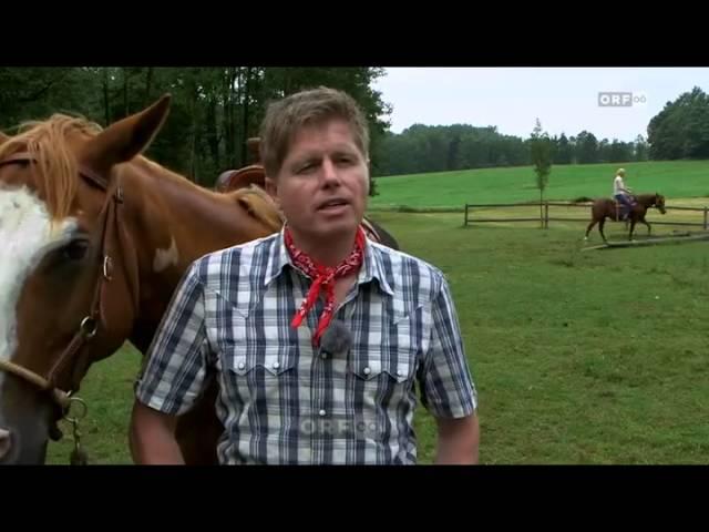 Pferdetrainer