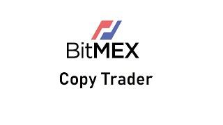 Bitmex Copy trading bot