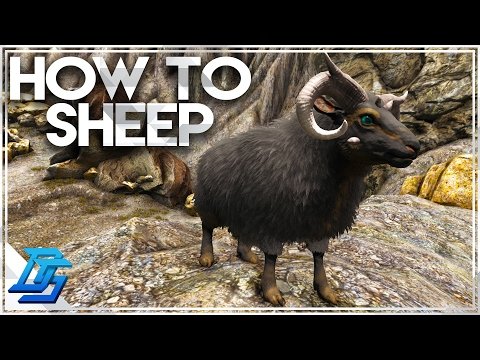 how-to-tame-ovis,-where-to-find,-and-why-they-are-rare,-mutton!---ark-survival-evolved