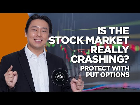 Is the Stock Market Really Crashing? Protect with Put Options!