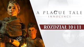AMAZONKA I JEJ HERKULES  •  A Plague Tale: Innocence  • [Rozdział 10 i 11]