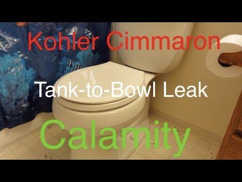 Kohler Cimmaron Toilet Tank To Bowl Flush Valve Leak Calamity