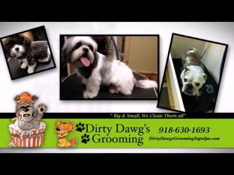 Dirty dawgs grooming llc and self serve dog wash youtube solutioingenieria Choice Image