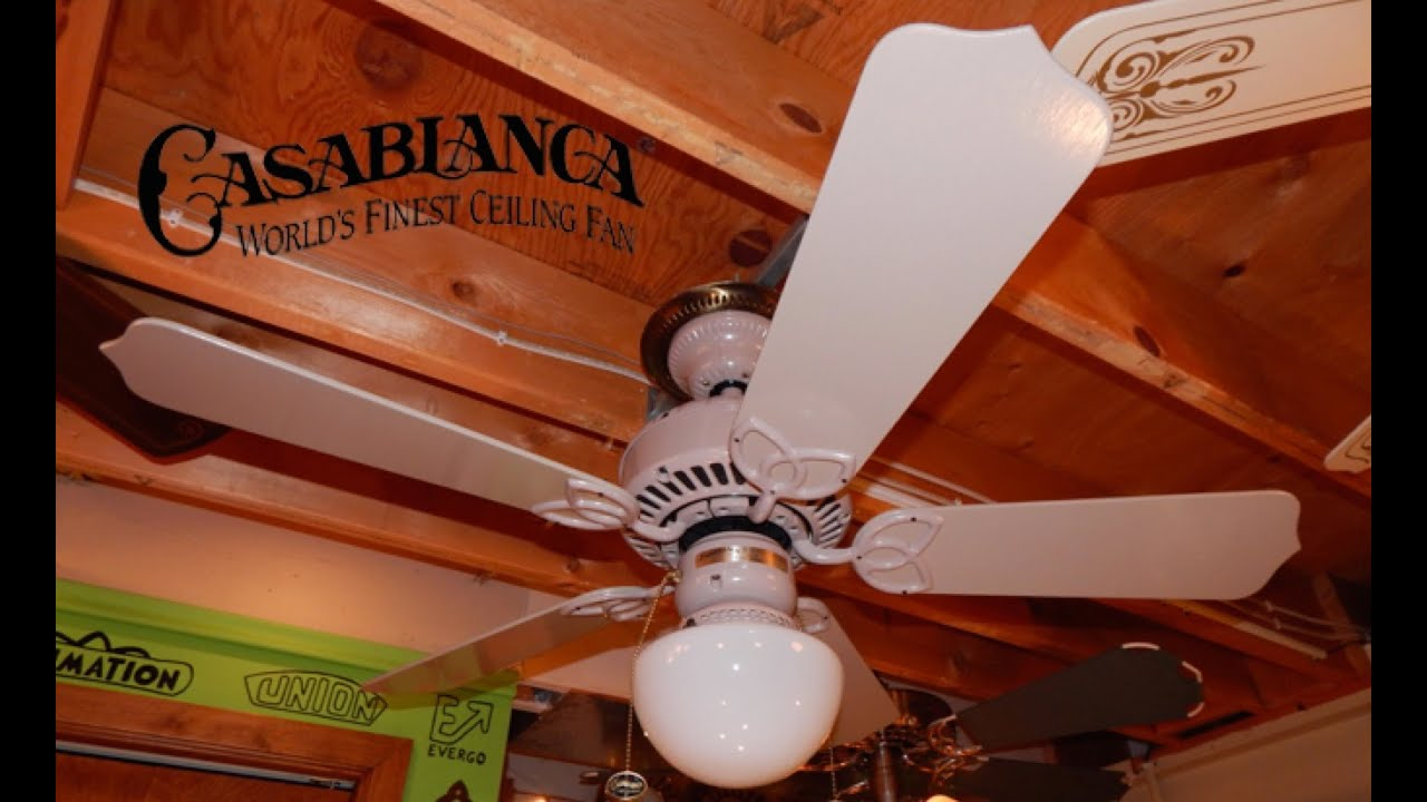 Casablanca Lady Delta Ceiling Fan Youtube