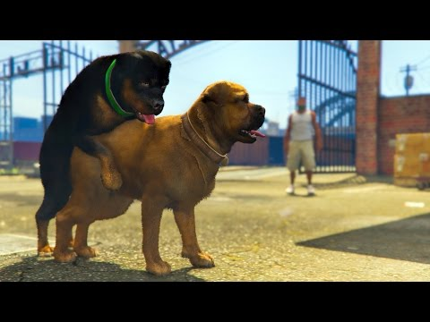 GTA 5 Funny Moments #149 (Fails and Random Gameplay Moments)
