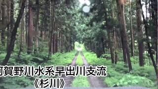 【阿賀野川水系早出川支流 杉川】