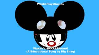 Baixar Wakko's TING Goes SKKRRRAAAA! (An Educational Song by Big Shaq)