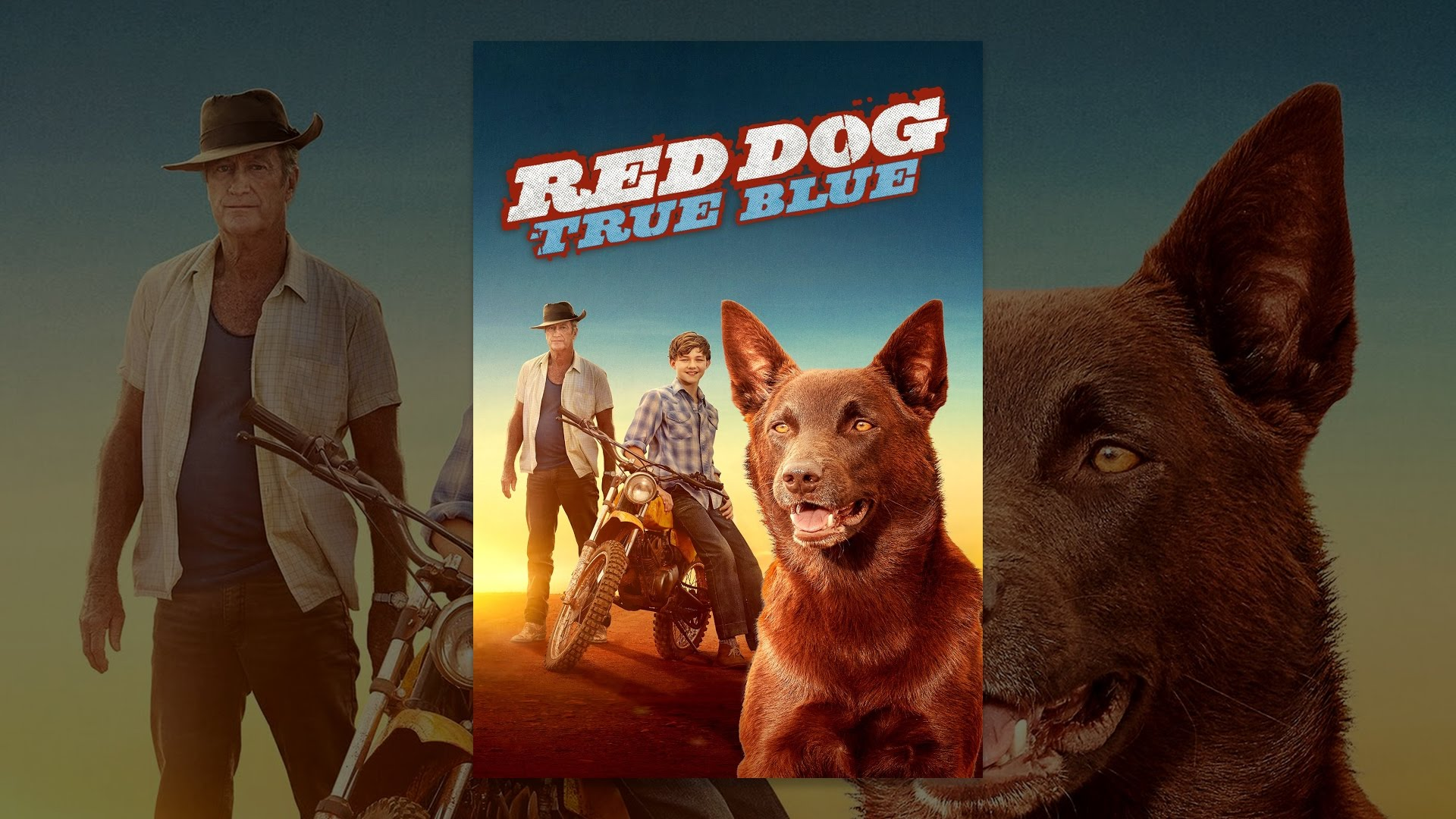 Red Dog True Blue Actors