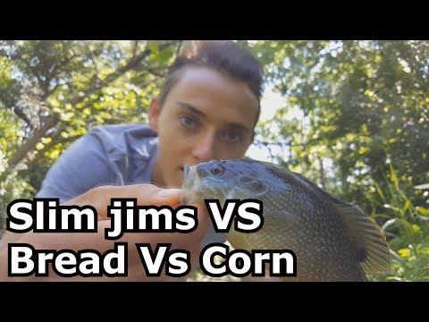 Bluegill fishing with Slim Jims VS Corn VS Bread