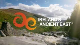 Visitor Experience Language Options at Visitor Attractions in Ireland's Ancient East thumbnail