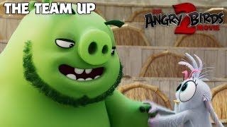 The Angry Birds Movie 2 - TV Spot: The Team Up