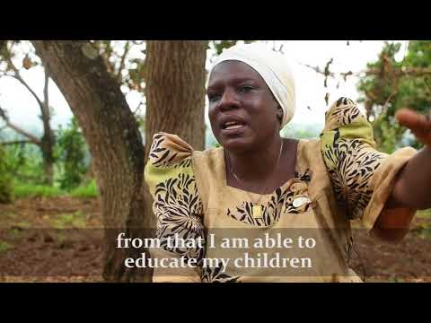 UNFAIR TRADE | Uganda - Coffee Farmer's Story