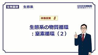 【生物基礎】 生態系8 生態系の物質循環:窒素循環(2) (9分)
