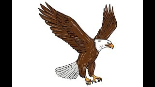 How to draw an eagle easy step by step for kids