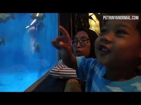 Raka Review KLCC Aquaria Kuala Lumpur Nih Teman Teman! [ Liburan ke Malaysia Bagian 3 ]