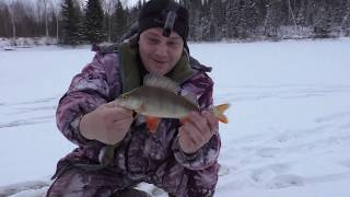 Первый лед 2019 2020 Рыбалка на таежном озере