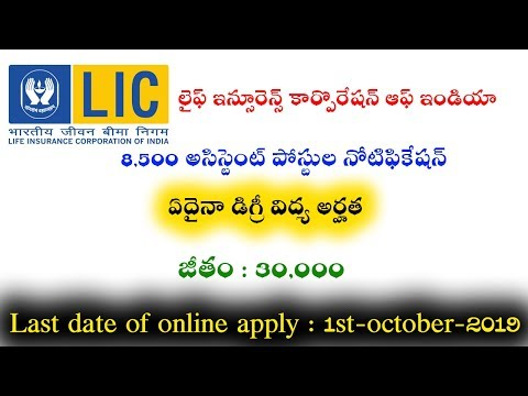 Life Insurance Corporation Of India 8500 Assistant Posts Notification 2019