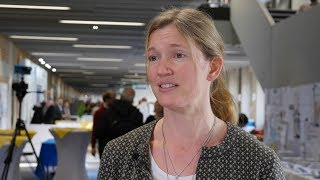 Histamine dihydrochloride and IL-2 for AML: impacts for relapse risk and survival