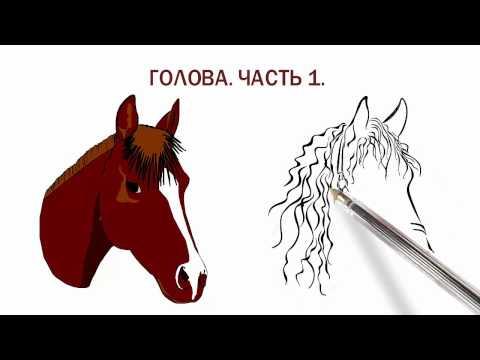 Вязание крючком лошади видео