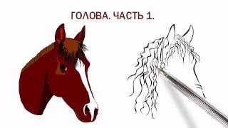 Амигуруми. Лошадка, зебра, единорог. Голова-Часть1.