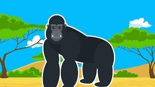 Дикие Животные Африки. Про Гориллу Мультик для Детей.Развивающий Мультфильм Дикие Животные для Детей