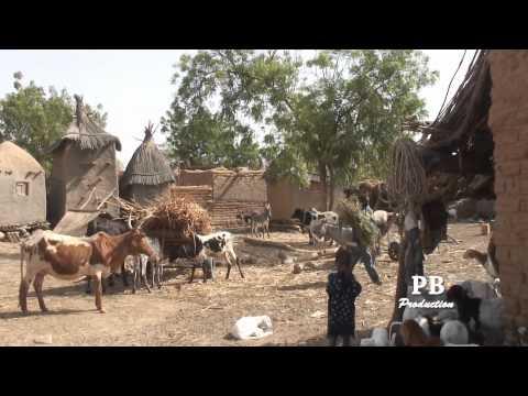 Mali: da Nara a Ouagadougou.f4v