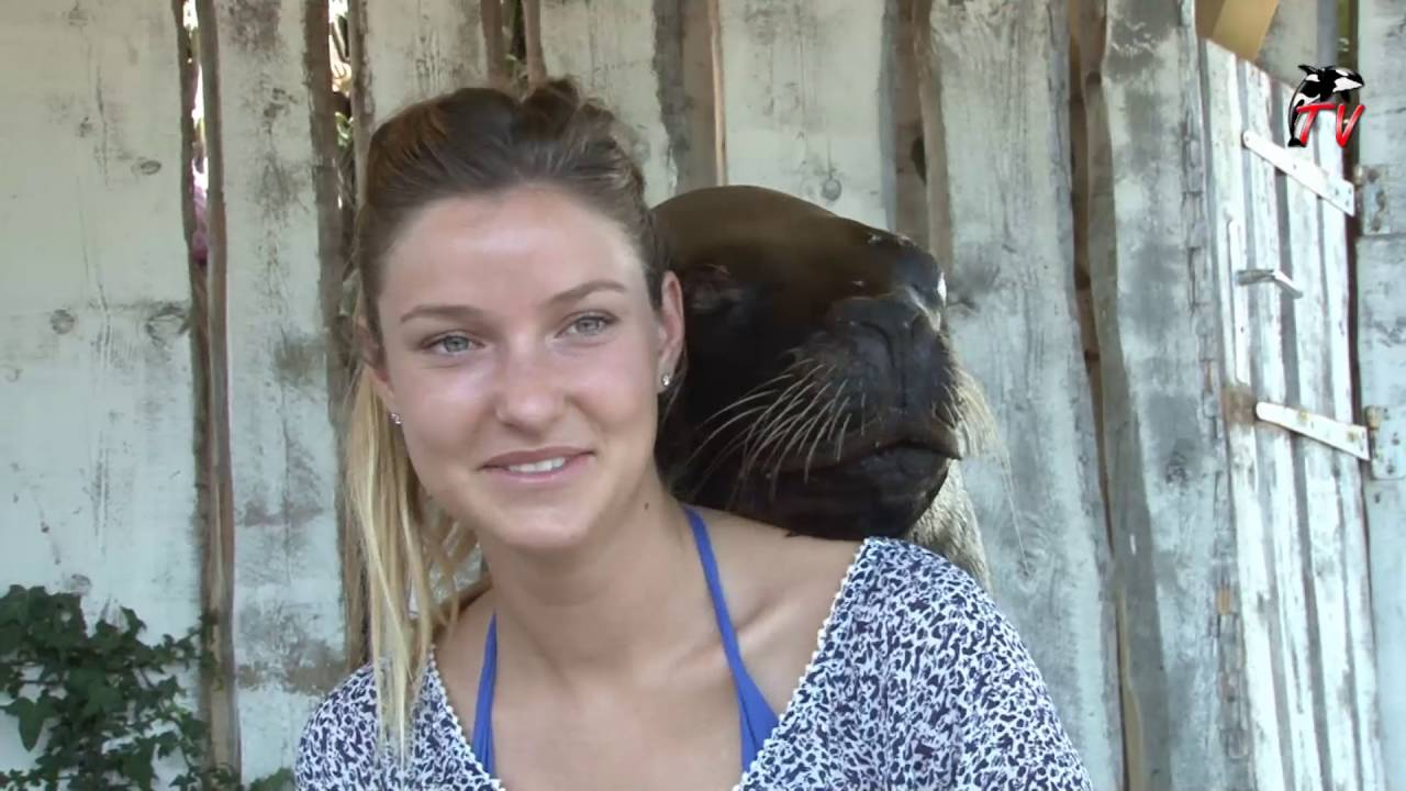 VIDEO. J'ai testé pour vous... Rencontrer les dauphins de Marineland