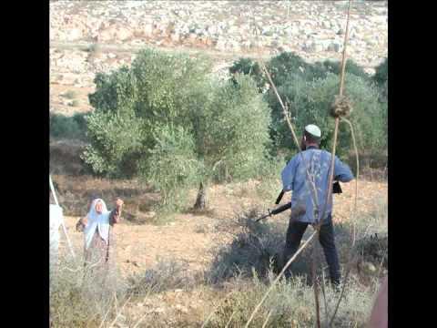 Life In Occupied Palestine - La vie en Palestine occupée