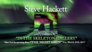 STEVE HACKETT – In The Skeleton Gallery (Album track)