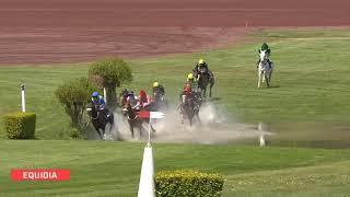 Vidéo de la course PMU PRIX CAMELIA XII