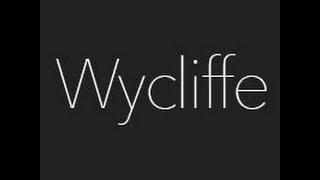 Rebranding of Wycliffe Barrett flies Xplane