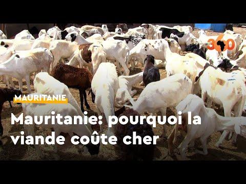 Mauritanie: voici pourquoi la viande est chère à Nouakchott, malgré l'abondance du cheptel