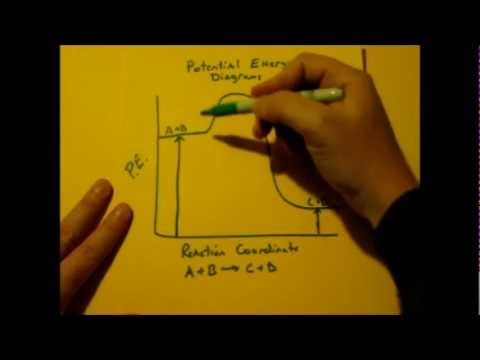 Potential Energy Diagram Basics (PE Diagrams)