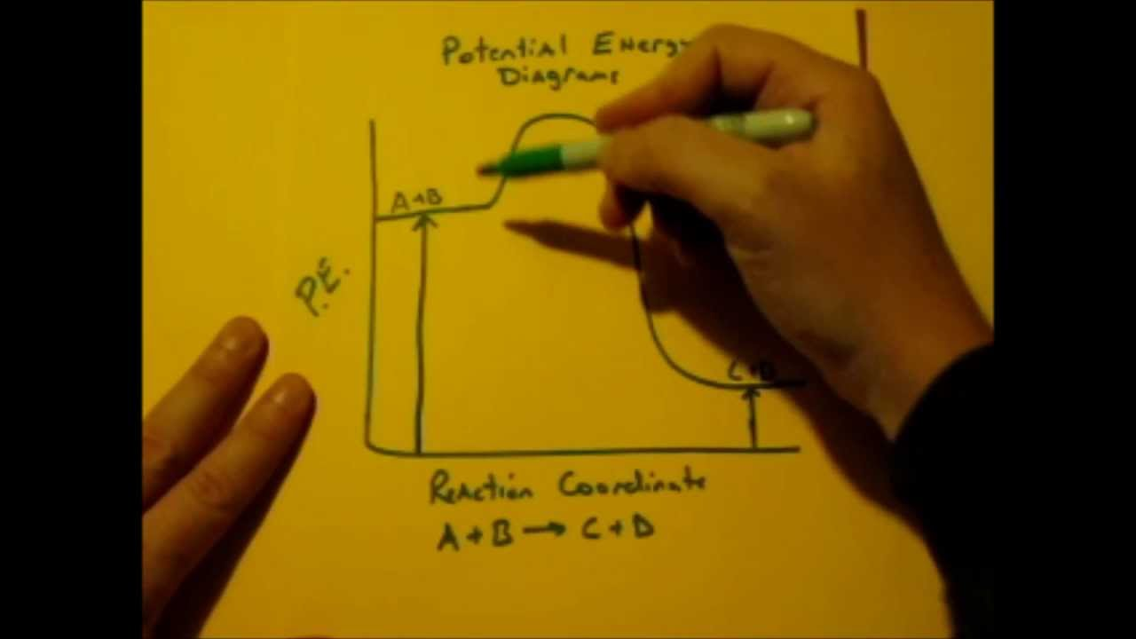 small resolution of draw a potential energy diagram with appropriately labelled axis to represent