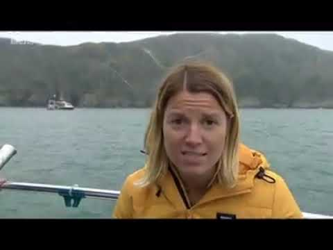 BBC Spotlight Plymouth - Pier Cellars