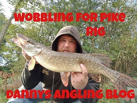 Wobbling Roach Rig And Livebait Fishing For UK Pike - Session 5