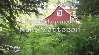 Dokumentär - En Stund Ihop Med Kurt Mattsson