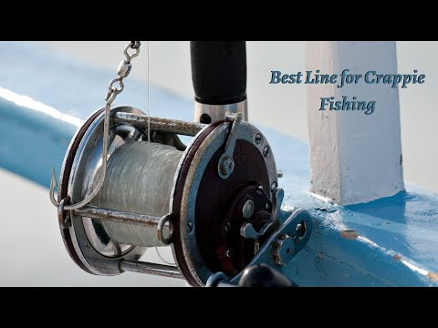 Best Line For Crappie Fishing - Top 5 Line Of 2020