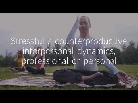 Professional Coaching for Professionals Cohasset, MA - Life Coach