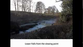 Aysgarth Waterfalls Walk